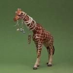 Giraffen bär Pernillas örhängen och Peronellas halsband.